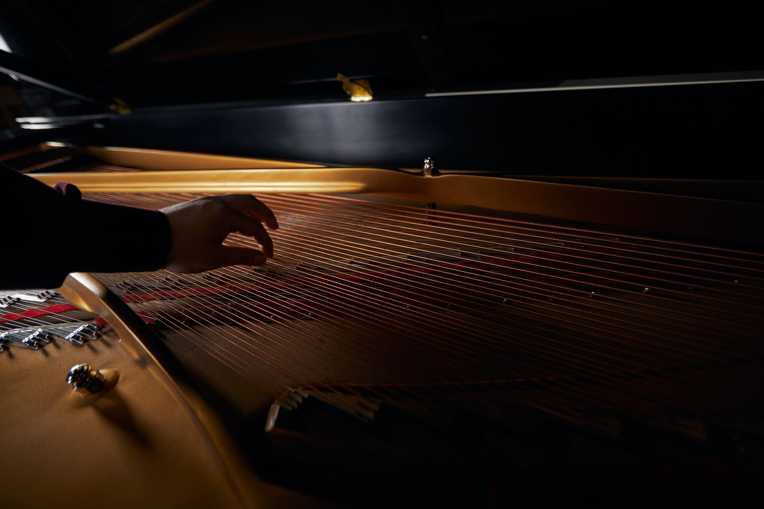 Diego Avilez plucks the strings of a Steinway.