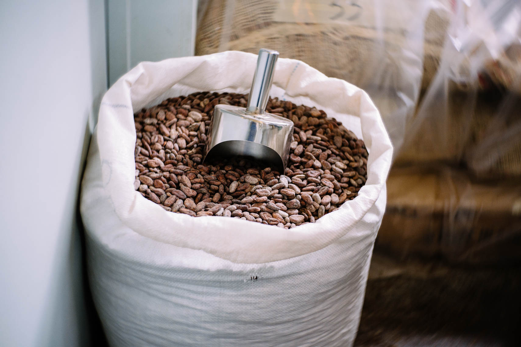 Scoop and cocoa beans.
